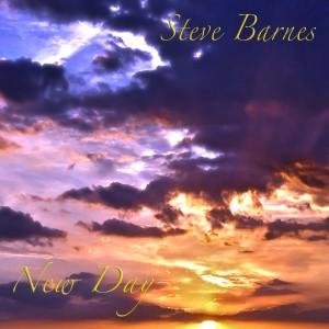 Steve barnes - New Day